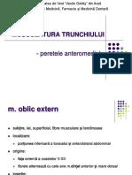 1. M trunchiului - oblic intern, extern, transvers,   drept abdominal