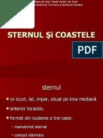 10. scheletu axial