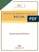 ManualRequerimentoEletronico.pdf