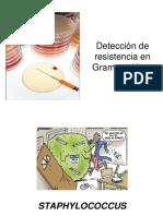 Detección de MECANISMOS DE RESISTENCIA G+