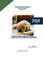 Hepatitis Virica Canina
