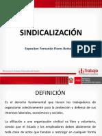 DERECHOS COLECTIVOS (1)
