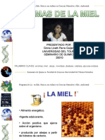 Enzimas de La Miel Ginna Parra