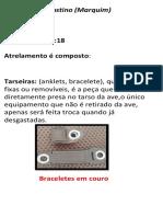 Equipamentos utilizados na Falcoaria(2)-7