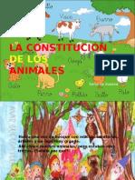 23296907 La Constitucion2