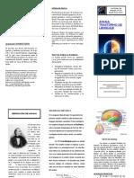 triptico trabajo final..pdf