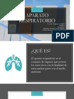 Presentación Biofisica.pptx