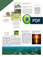 folleto Portugués