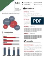 Modelo_CV_Infografico_pt