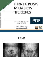 SERGIO ROBLES.pptx