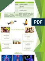 Importancia de los extractos vegetales.pptx