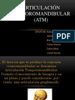 Articulación temporomandibular (ATM).pptx