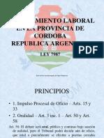 PROCEDIMIENTO LABORAL EN LA PROVINCIA DE CORDOBA