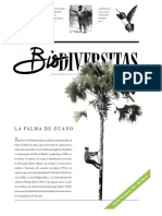 Palma de Guano
