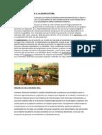 DE LA VIDA NOMADA A LA AGRICULTURA