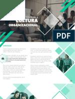1561998054E-book_-_Guia_de_introduo__Cultura_Organizacional