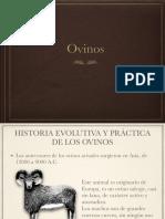 Clase 7. Producción de Ovinos