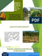 IMPACTO AMBIENTAL PRODUCIDO POR DEFORESTACION DE BOSQUES E INVASION DE PARAMOS [Autoguardado]