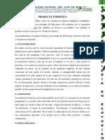 PRODUCTO-TURISTICO-1.docx
