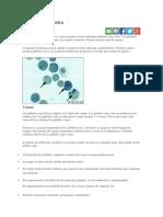 Anemia ferropénica (valores).docx