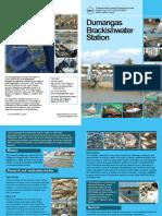 DBS-flyer_9-7-15