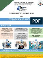 TEORÍA BÁSICA DE MUESTREO