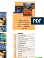 15 Directrices y Requisitos.ppt
