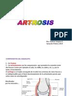 artrosis sanación