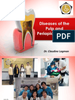 AFP Diseases of the Pulp.pdf