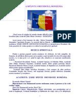 Aca TSO ROMANIA 1.doc