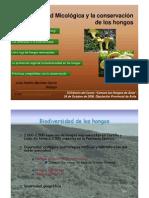 """Presentación de la conferencia """"Actividad Micológica y Conservación de los Hongos"""". José Andrés Martínez García. Ávila. 24 de octubre de 2008."""