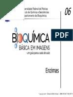 06-Enzimas-PDF