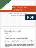 TEORIA COMUNICARII CURS VII