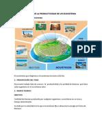 CALCULAR LA PRODUCTIVIDAD DE UN ECOSISTEMA TP3