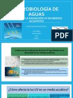 ALEXIS MALDONADO EFECTO DE RAD UV EN MEDIOS ACUATICOS 2015-118011.pptx