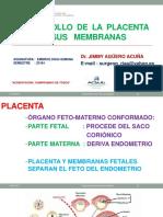 PLACENTA-2018