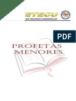 GUIA PROFETAS MENORES.docx