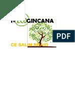 1ª        GINCANA.docx