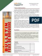 bulletin-feu-brousse_janvier2-2020