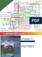Enzymes_final.pdf