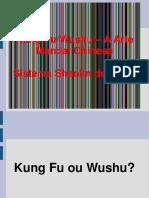 Kung Fu_Wushu A Arte. Marcial Chinesa. Sistema Shaolin do Norte