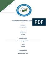 tarea 1 congnocitiva.docx