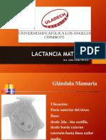 LACTANCIA MATERNA_2019