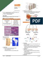 Surg 2 Ortho Basic Sciences to NM CT.docx