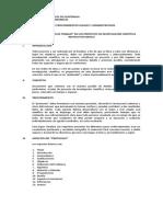 Protocolo o plan de trabajo
