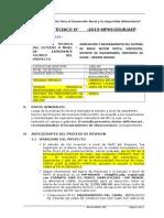 INFORME DE EVALUACIÓN Nº RAHUAPAMAPA FN.doc