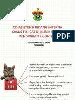 flu cat.pptx