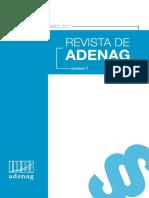 Revista n°7 ADENAG