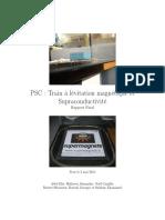 pu3576.pdf