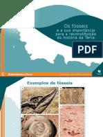 Os fósseis e a sua importância para a reconstituição da história da Terra_7ano